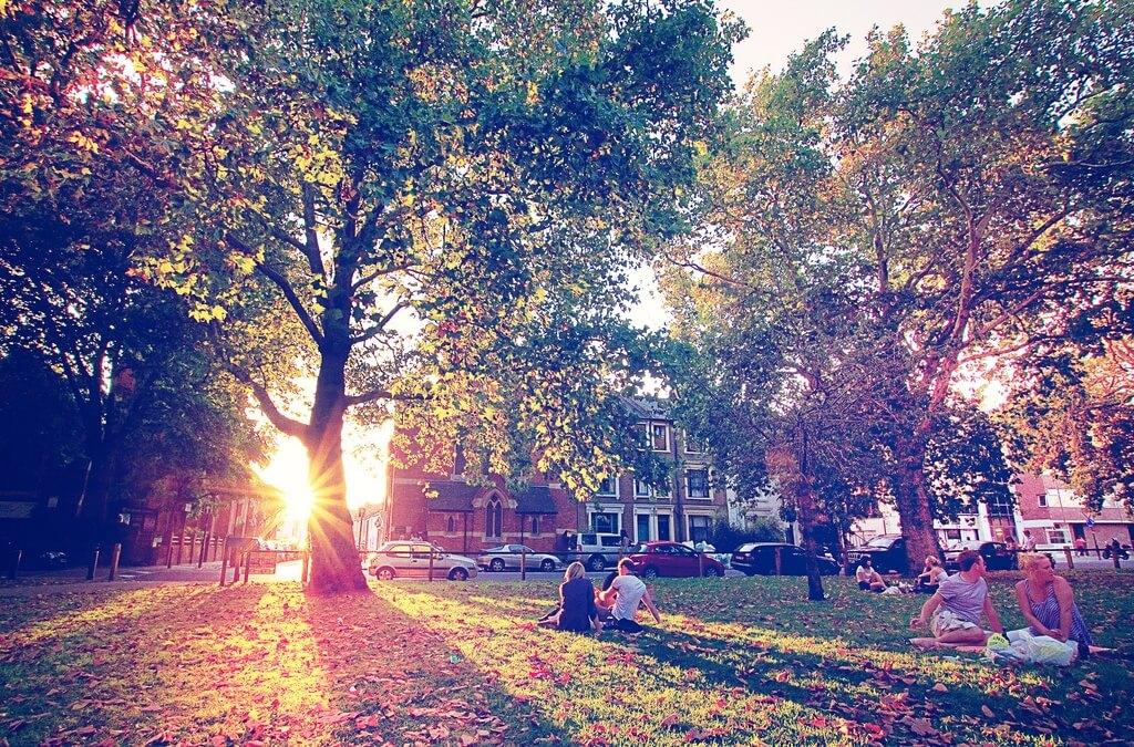 Fulham : le quartier chic et verdoyant de Londres