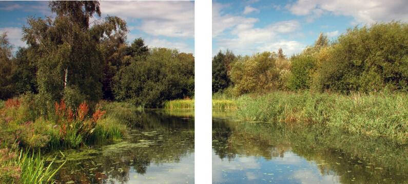 wetland londres